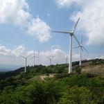 青山高原風力発電所
