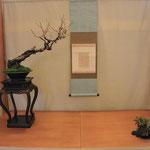 Esposizione di Gianni Cara - Prunus