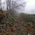 Caminos con el empedrado mojado difíciles de superar
