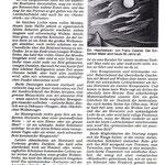 Einbecker Morgenpost3.8.1981