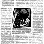 Einbecker Morgenpost  13.2.2021