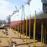 Schiffswerft in Südkorea                                                                  Foto: Schomberg