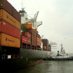 Schlepper im Hamburger Hafen                                                        Foto: Schomberg