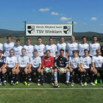 1.Mannschaft 2012/2013