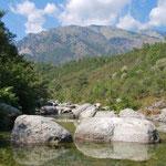 Torrent près de Noceta