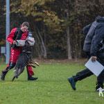 Schweizer Meisterschaft Schutzdienst 87 Pkt., Vize Schweizer Meister 2017