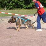 Biathlon Holland 2005