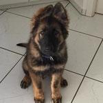 3,5 Monate alt