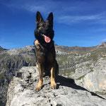 2 3/4 Jahre, Fründenhütte Sept. 2018