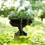Potsdam: Steinschale EDWARD  in verwunschenem Garten, phantastisch vom Kunden fotografiert.