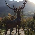 Tirol, Österreich: Bronzehirsch ORSON