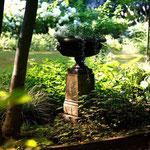 Potsdam: Steinschale EDWARD auf Podest HENRY in verwunschenem Garten, phantastisch vom Kunden fotografiert.