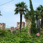 Die Burg von Lazise