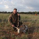Springbock, Springbuck , Springbok
