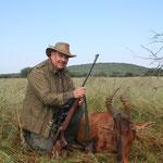 Kuhantilope, Red Hartebeest