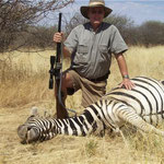 Flächenzebra,  Plain´s Zebra, Burchell´s Zebra