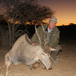 Elenantilope (Eland Antilope )