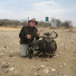 Streifengnu, Blue Wildebeest, Blue Gnu, Brindeled Gnu