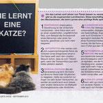 Wie die Katze lernt ...