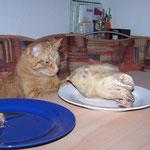 16.06.2004 - Hier wird für mich Schonkost zubereitet ...