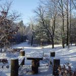 Schnee, Sonne, minus 10 °C - herrlichstes Winterwetter ...