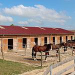 L'écurie de propriétaires, Barns