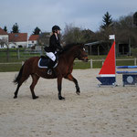Quelly Pearl, Poney 2 Vitesse, Chateaudun.