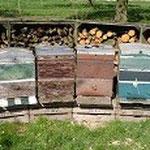 beien honing