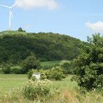 Gschnaidtwiesen - einer der Lebensräume - Foto Unfried