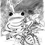 illustration jeunesse La queue de l'hippopotame - contes du Tchad