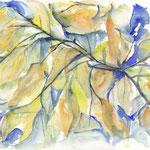 Blätter 20