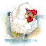 Sofi das Huhn
