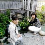 北條雅姫 久末理加津(古流かたばみ会)