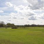 """Aufgrund der großflächigen Vermoorungen war der Waldanteil im Bereich der Münchener Schotterebene von Natur aus schon immer gering. Nach """"Verbesserungsmaßnahmen"""" wie Entwässerung und Düngung wurden frühere Wiesen und Weiden zu Ackerland umgebrochen."""