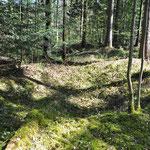 Südlich der heutigen Waldsiedlung in Freising finden sich Relikte eines frühmittelalterlichen Abbaus von Eisenerz. Über 200 Gruben des Obertageabbaus sind noch erkennbar.