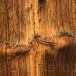 Holz von Sonne braun gebrannt