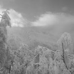 Guttannen Wachtlammstock nach  Schneefall