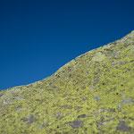 Grimsel Granit