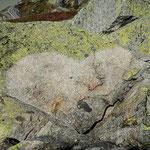 Seeuferegg Herz auf Granit