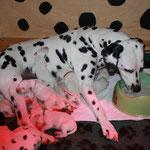 Während die kleinen Weisswürstchen sich an der Milchbar stärken stärkt Mama sich aus dem Napf