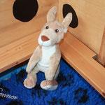 Der kleine Känguru war ein Geschenk unserer lieben Freund Ramona. Er ist der Glücksbringer der K-chen