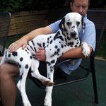 unser Schoßhund