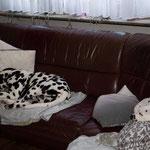 Die Couch teilen wir natürlich auch schon