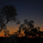 Sunset Ridgetop Bushcamp