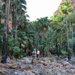 El Questro Gorge - Wanderung