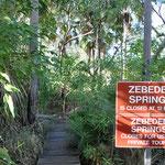 El Questro - Zebedee Hot Springs
