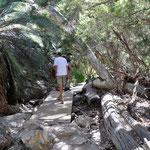 Wanderung zum Stanley Chasm