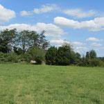 Vue de la prairie vers le site