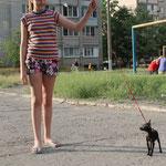 Черная Жемчужинка Аврора Ксена продана (Киев)