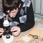 """Лабораторная работа """"Многообразие клеток"""""""